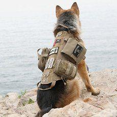 Dog Pack Training Military Dogs Dog Training Vest Military