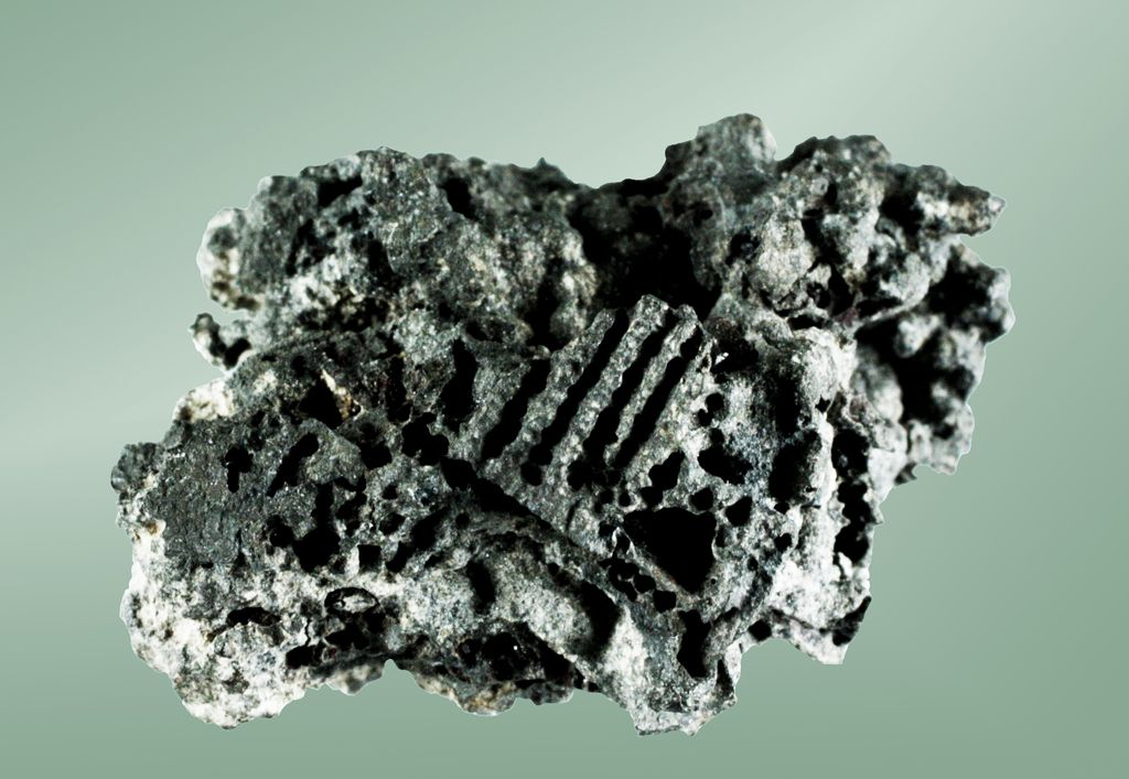 Rammelsbergite, NiAs2, Jáchymov, Jáchymov District, Krušné Hory Mts, Karlovy Vary Region, Bohemia, Czech Republic.  2.9 x 2.2 x 1.2 cm. Typical skeletal and partially rounded growths. Copyright: © CCURTO2010
