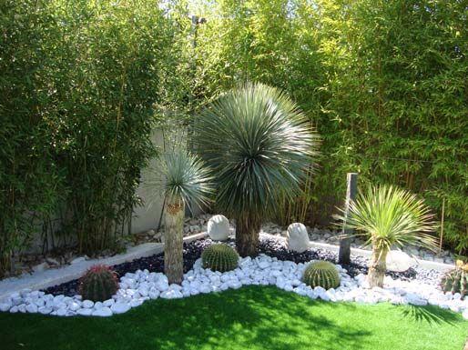 Amenagement jardin exotique recherche google jardin exotique pinterest jardin for Amenagement contemporain