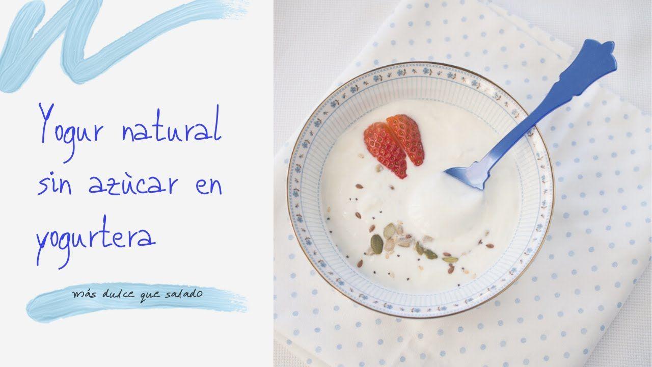 Yogur Natural Sin Azucar En Yogurtera En 2020 Yogur Natural