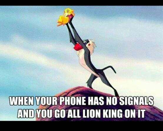 Lion King Mobile Phone Funny Pictures Laugh Humor
