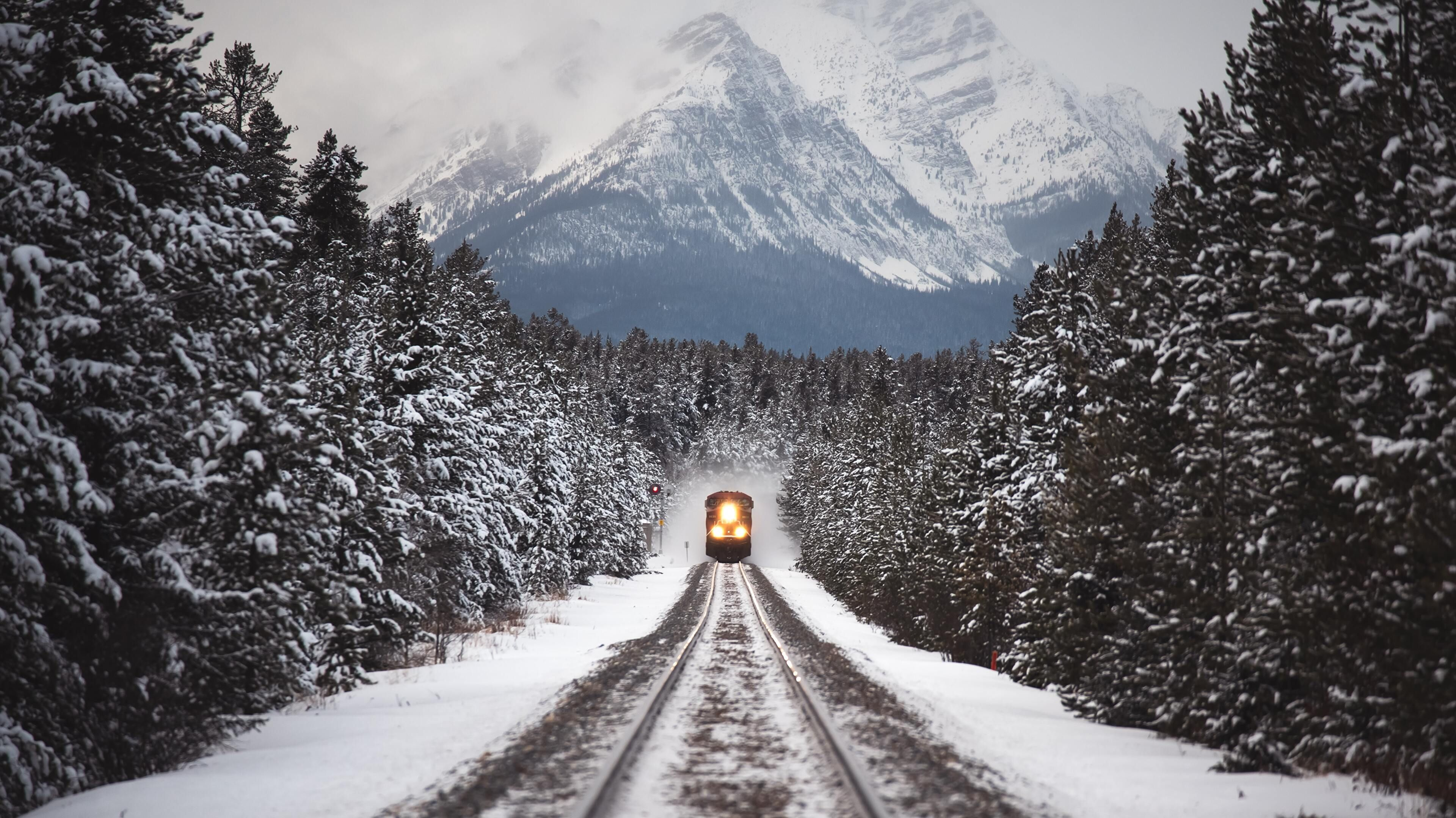 Snow On The Track Winter Travel Travel Aesthetic Train Tracks Hd wallpaper winter snow train forest