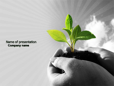 New Sprout Powerpoint Template  Boletin Paz Y Bien