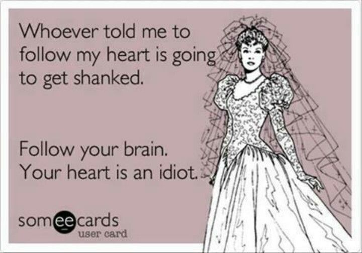 Follow your brain