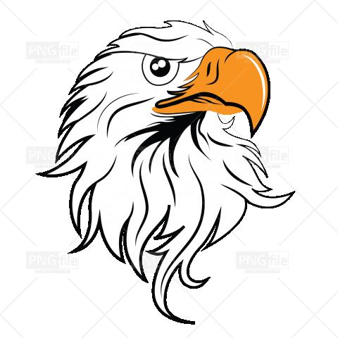 Golden Egeal Illustration Icon Design Eagle Head Eagle