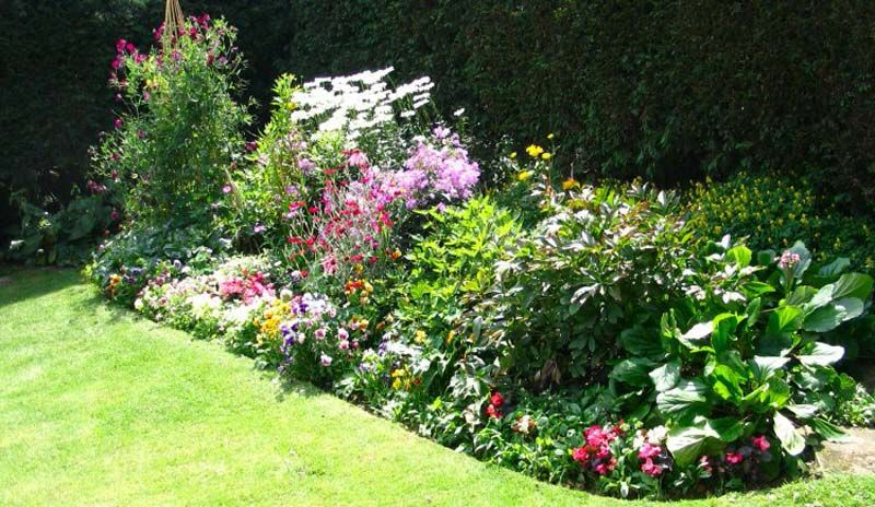 Ideas on how to design a flower bed small flower bed for Small flower garden in front of house