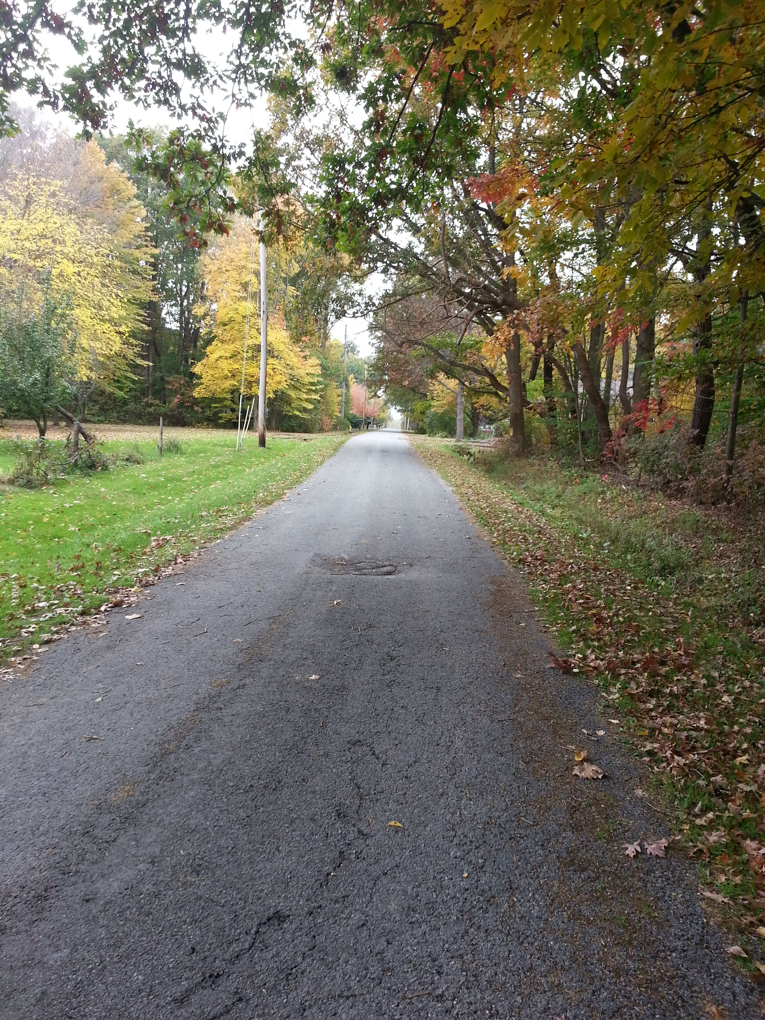 a country road in the Fall....