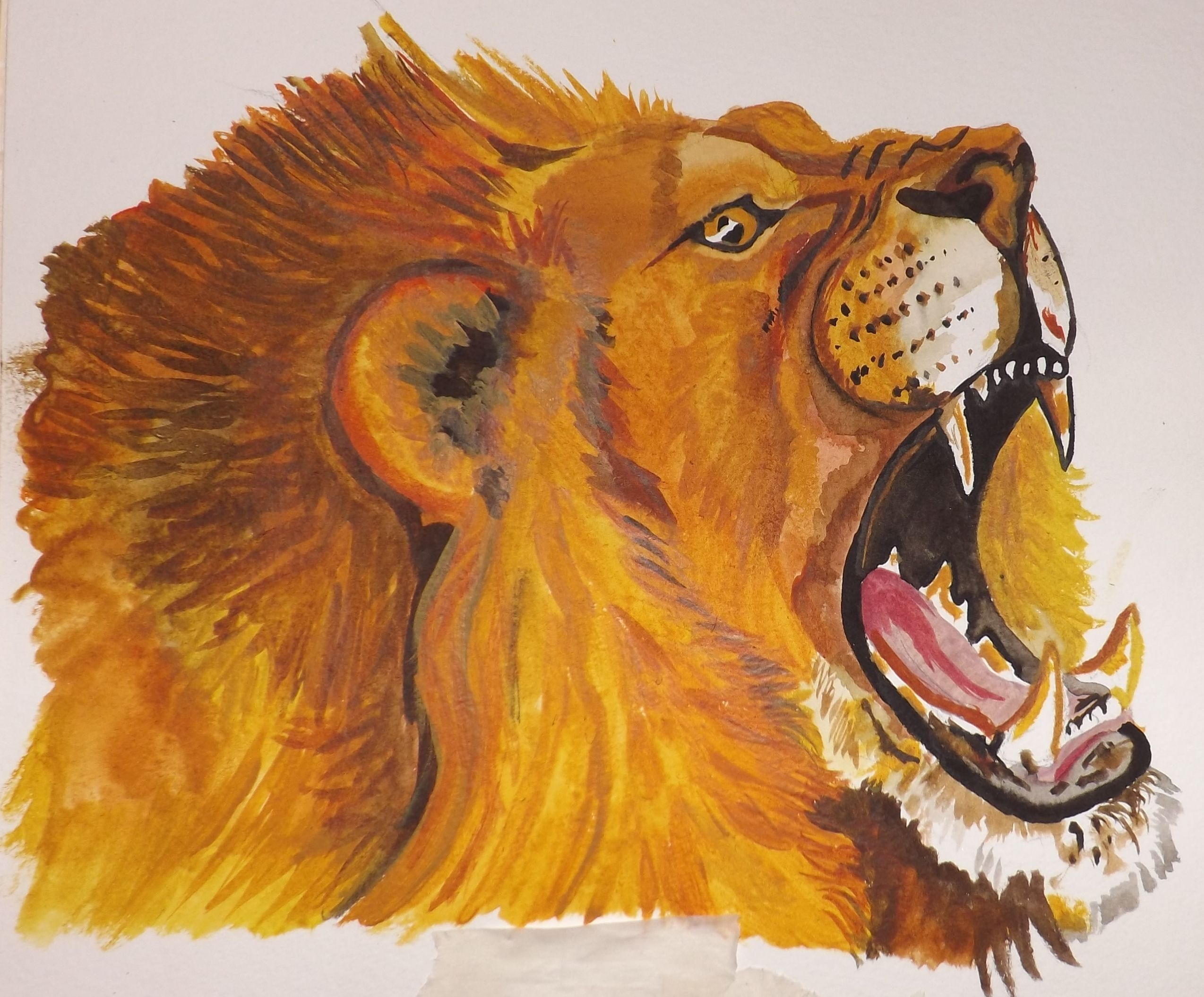 Lion in water colour