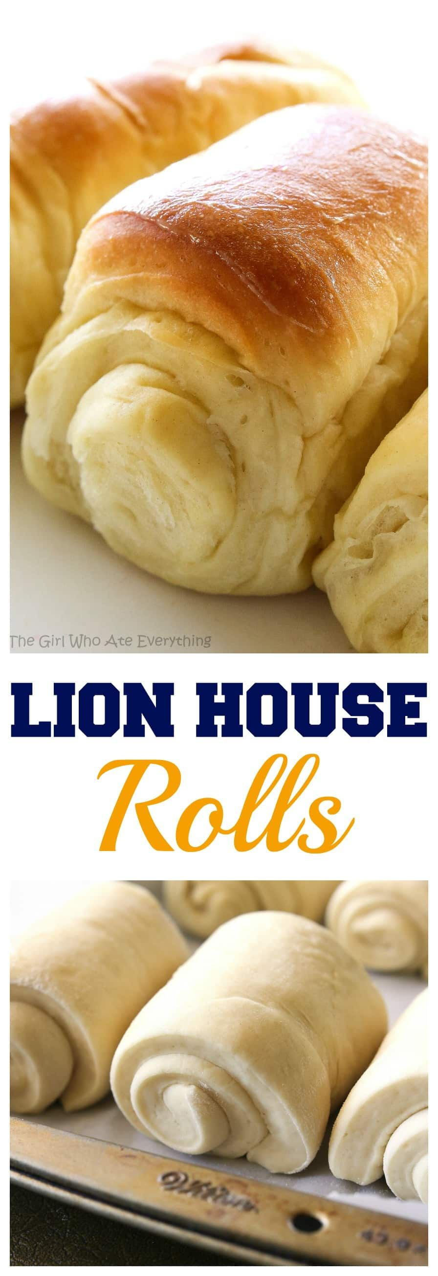 Roll Lion House Rolls  my favorite rolls hands down Soft fluffy and unbelievable