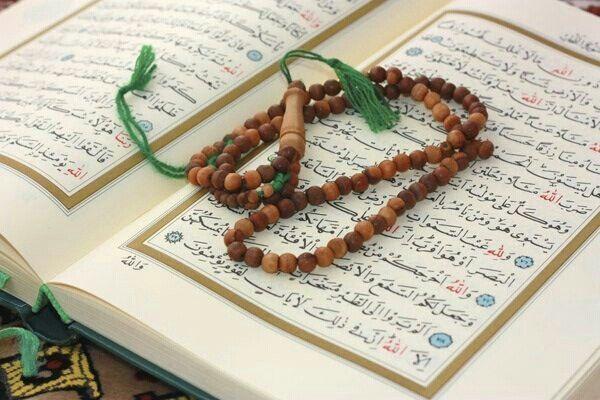 Pin By Rehab On مصآحف Quran Holy Quran Quran Wallpaper