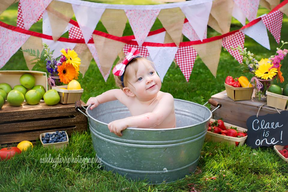 Pittsburgh Birth And Newborn Baby Photographer Farmers Market Birthday Party 1st Birthday Pictures Barnyard Birthday