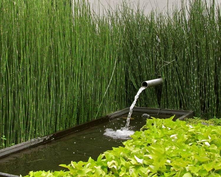 bambus schirmt den gartenteich ab - coole idee für den zen garten, Garten ideen