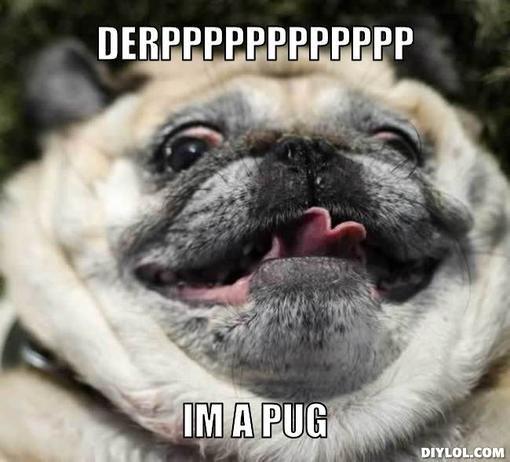 Pug Meme Google Search Star Wars Humor Star Wars Memes Pugs