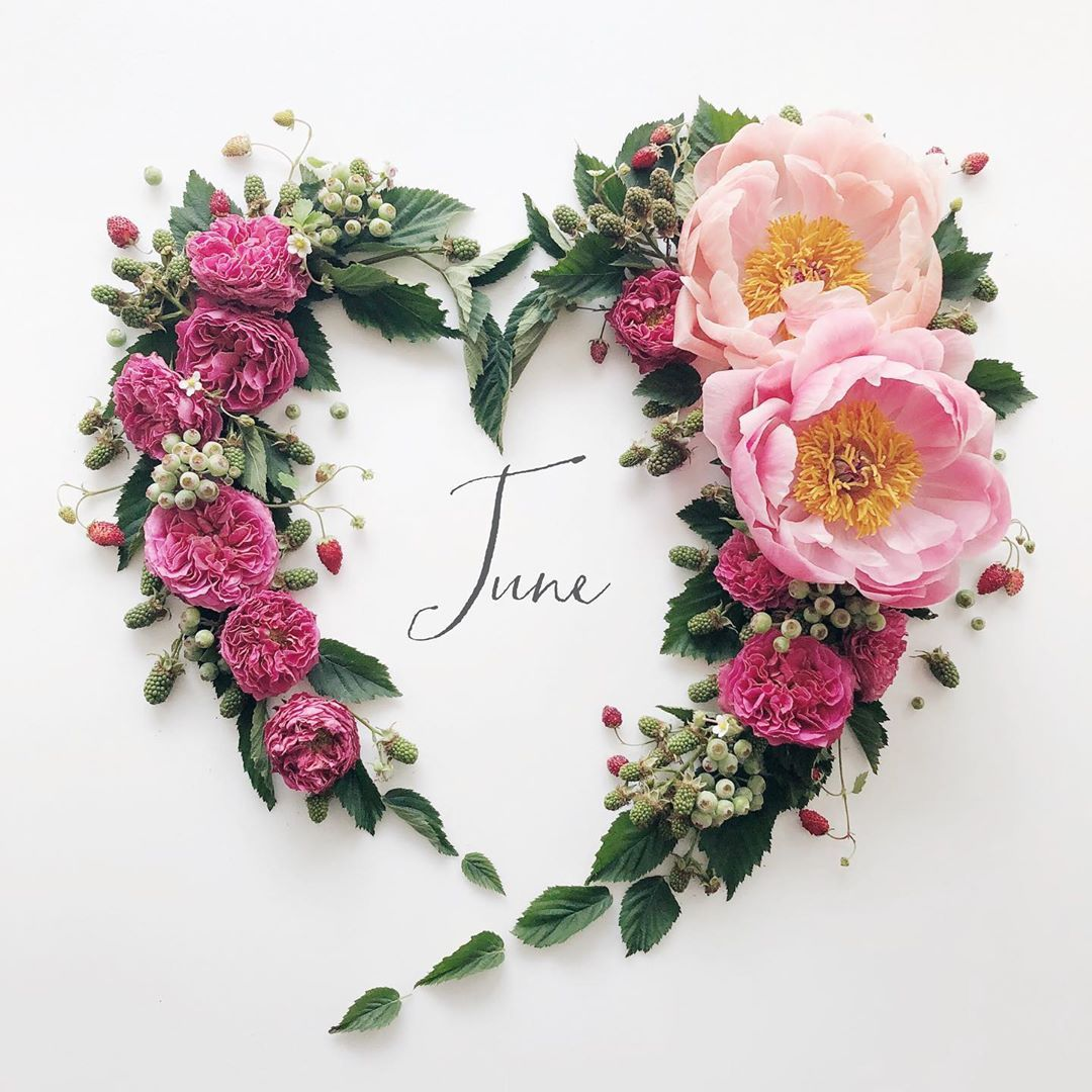 Yoko V Instagram June 1 2019 Hello June Peony Rose Heart For You Blackberry Blueberry Wildstrawb In 2020 Welcome June Month Flowers Hello June