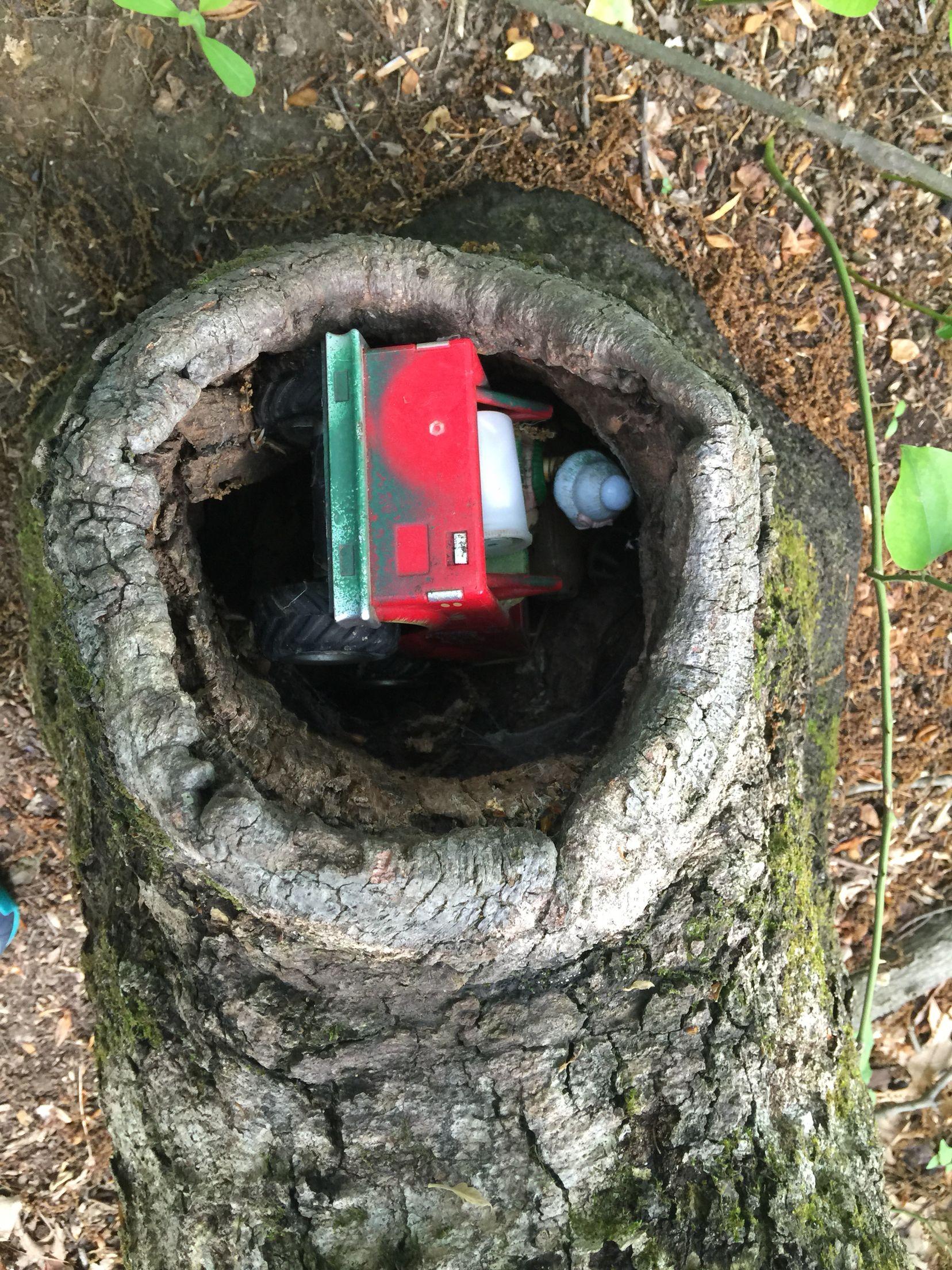 #geocatching Iron Hill Park Newark, De