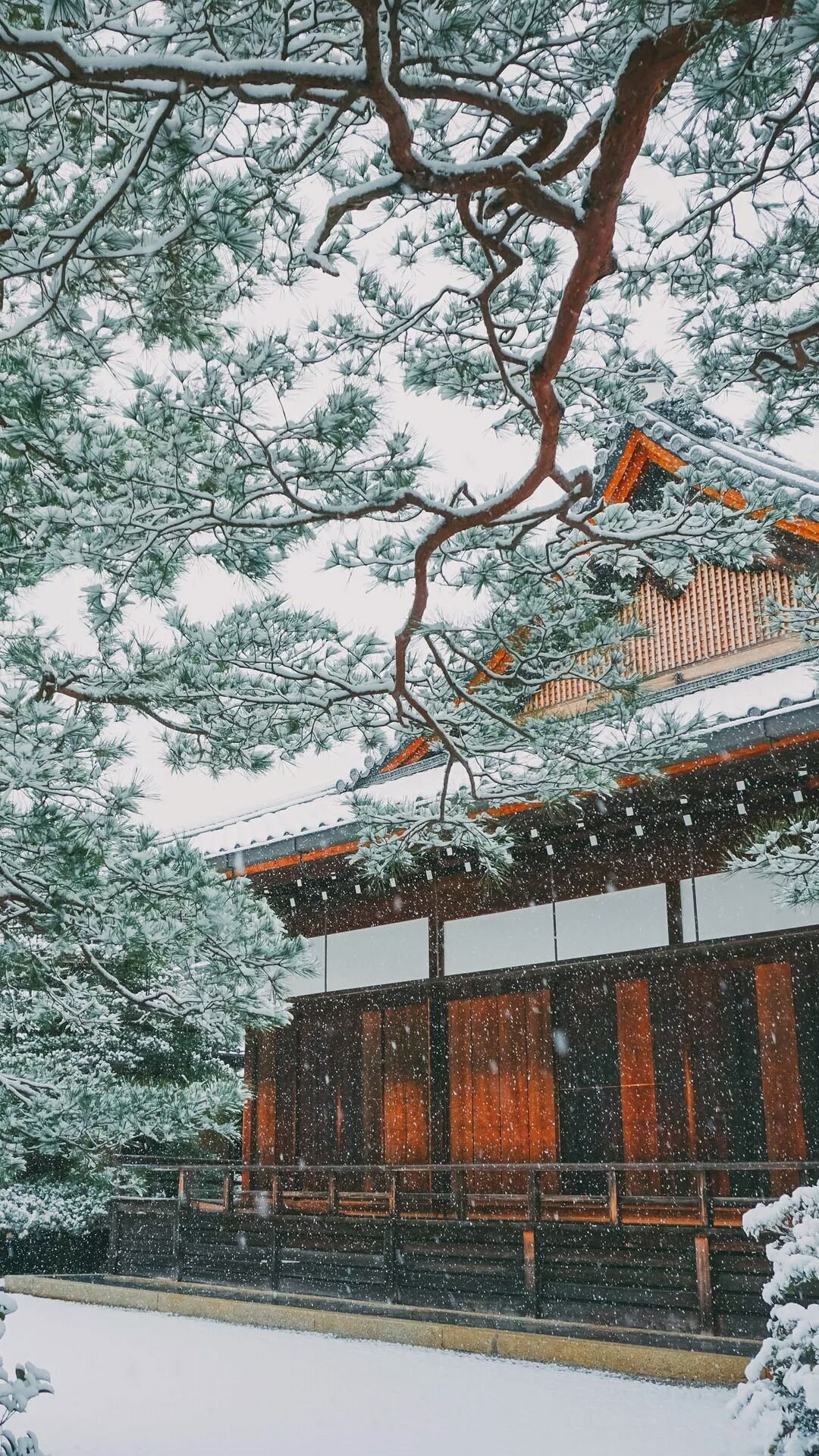 Winter Snowing in Japan. Asian or oriental houses and buildings. Frozen snowflakes, christmas holidays, snow ice. Tap to see more beautiful iPhone 6 Wallpapers, lockscreen backgrounds, fondos. - @mobile9