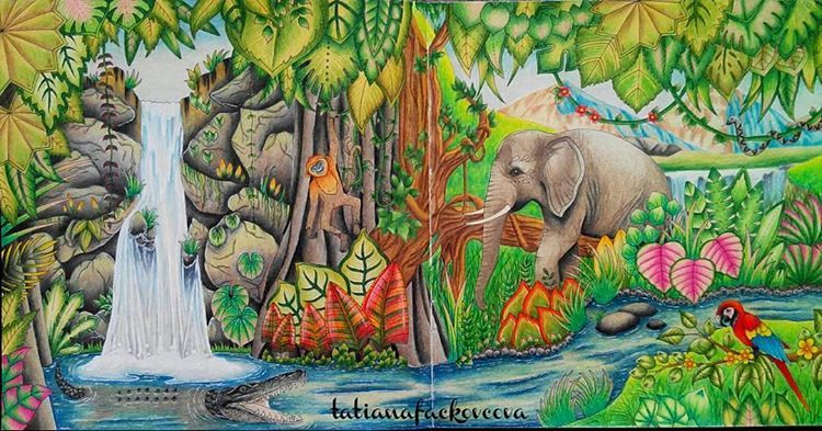 Amazing Regrann From Tatianafackovcova Magicaljungle Magicaljunglecolori Johanna Basford Coloring Book Magical Jungle Johanna Basford Jungle Drawing