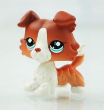 2 Brown White Collie Dog Blue Eyes Kids Toys Puppy Littlest Pet