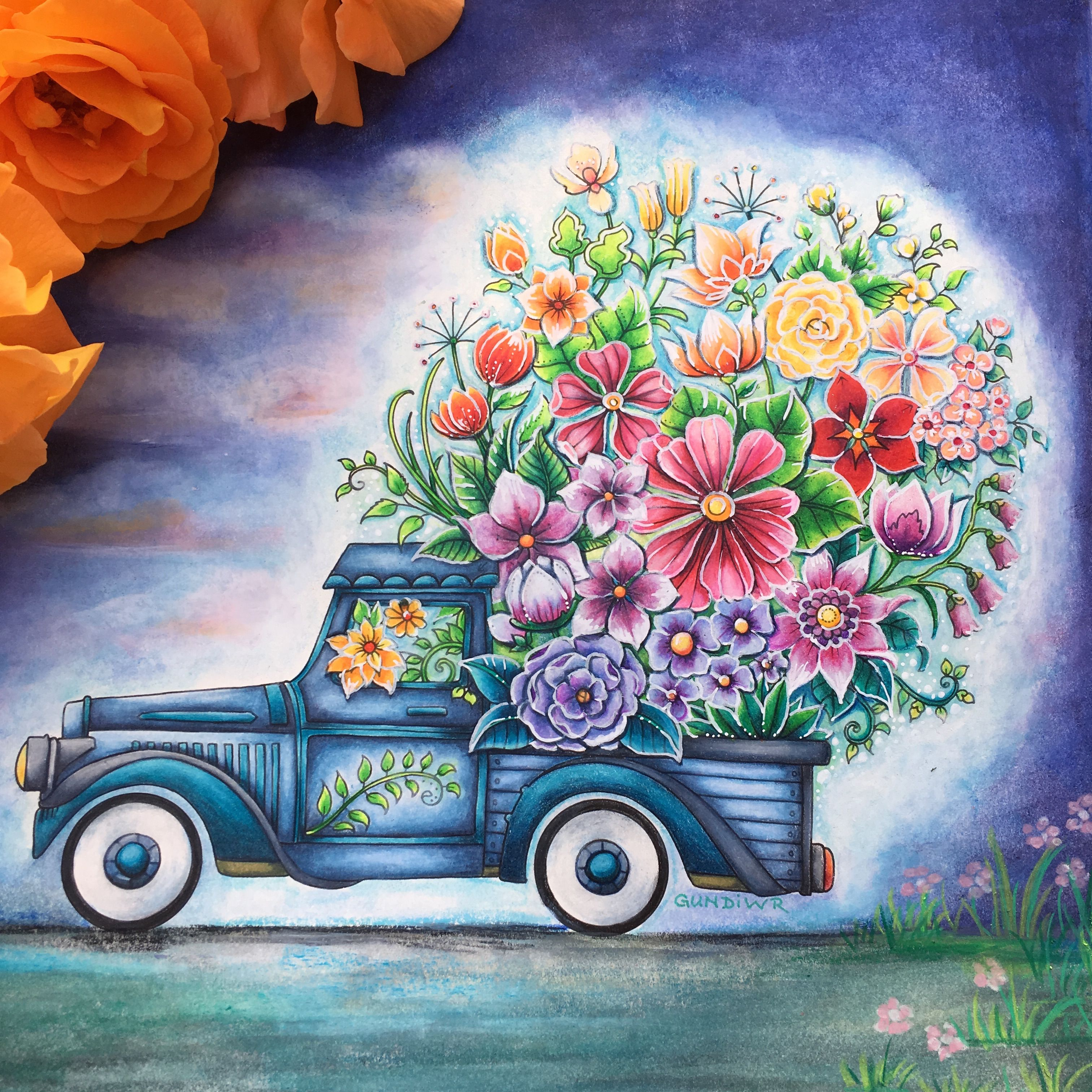 330 World Of Flowers Johanna Basford Ideas Basford Johanna Basford Johanna Basford Coloring