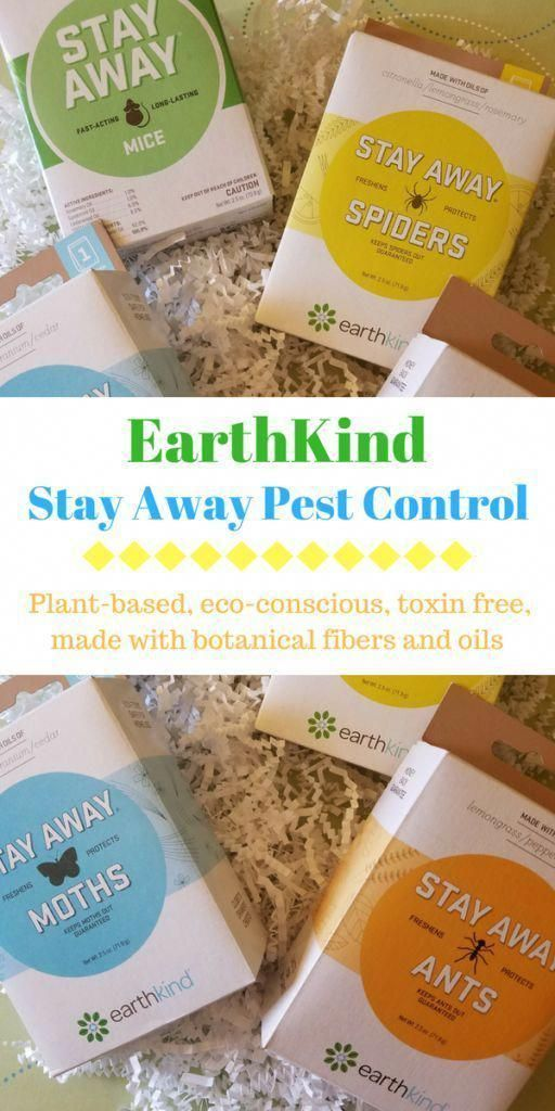 to School with EarthKind Stay Away Pest Control Review. - DustinNikki Mommy of Three
