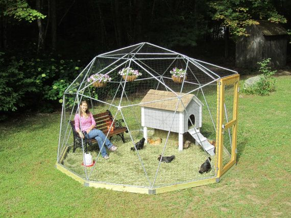 12 ft geodesic dome outdoor aviary chicken enclosure for Chicken enclosure ideas