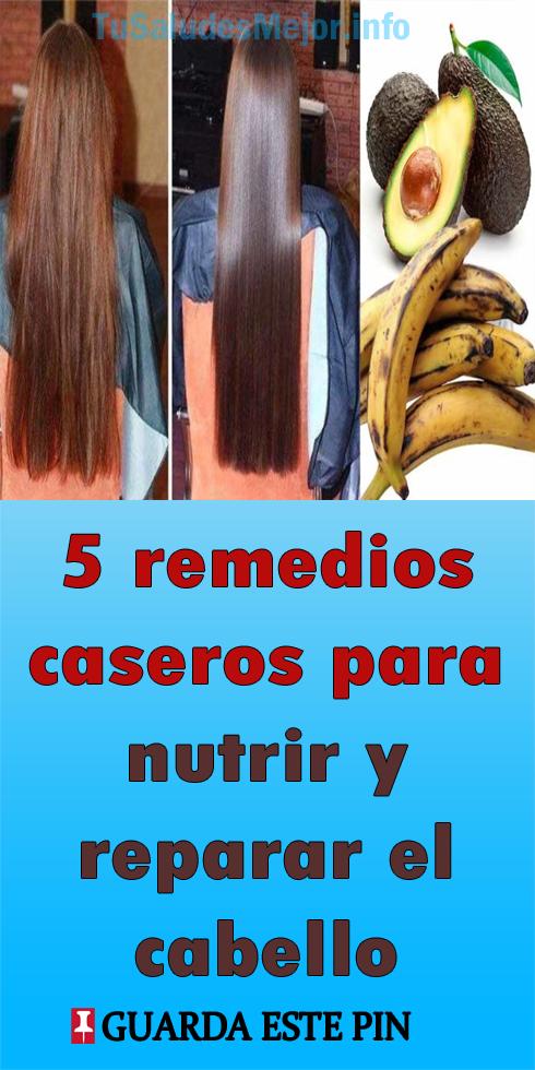 5 Remedios Caseros Para Nutrir Y Reparar El Cabello Maltratado Cabello Maltratado Remedios Caseros Remedios