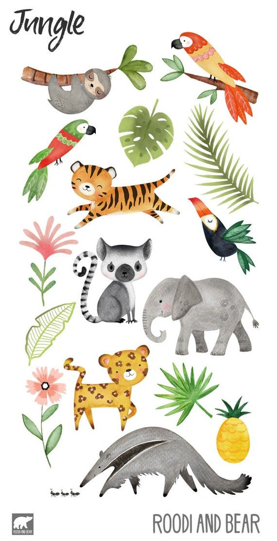 Watercolour Jungle Clipart Jungle Animals Hand Painted Etsy In 2021 Animal Illustration Kids Jungle Animal Art Jungle Clipart
