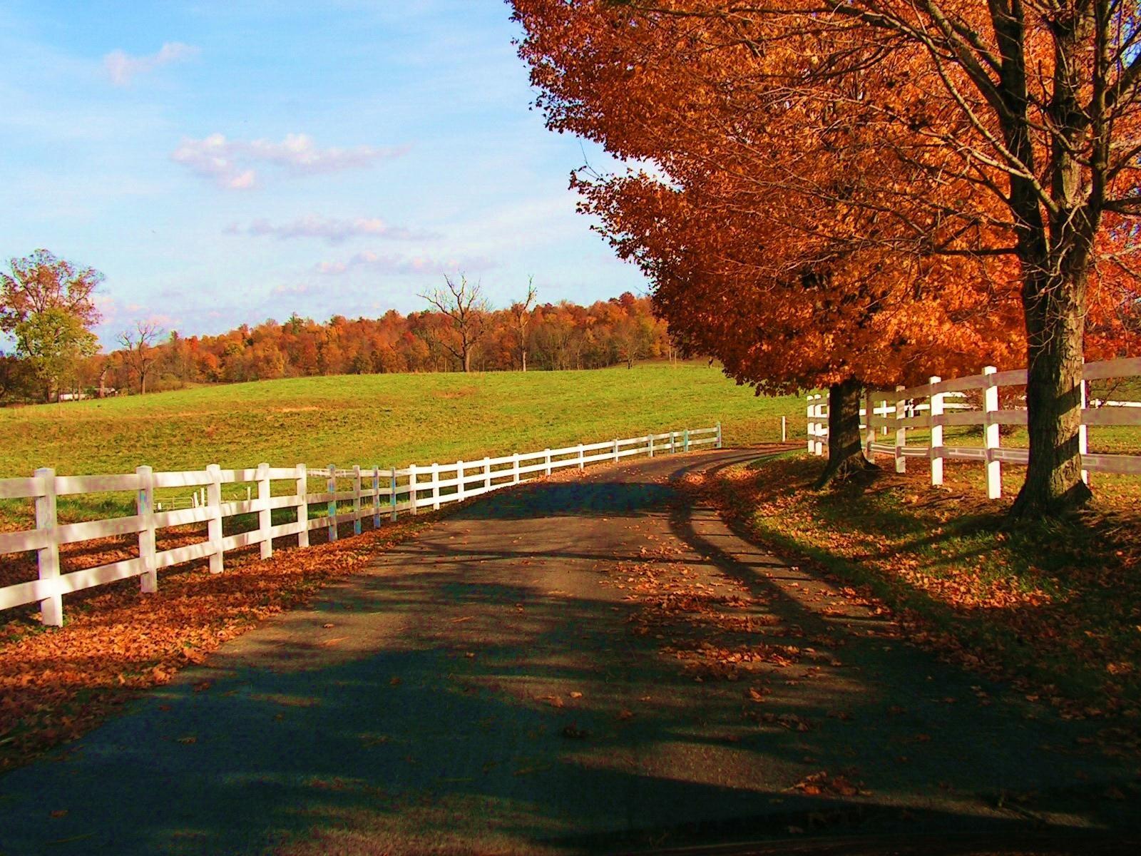 Autumn Landscape Download Landscape Autumnscene Wallpaper