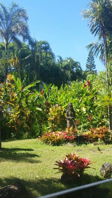 Stops on the road to Hana - Garden of Eden. Located on mile marker ...