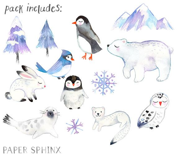 Watercolor Winter Animals Clipart Winter Watercolors