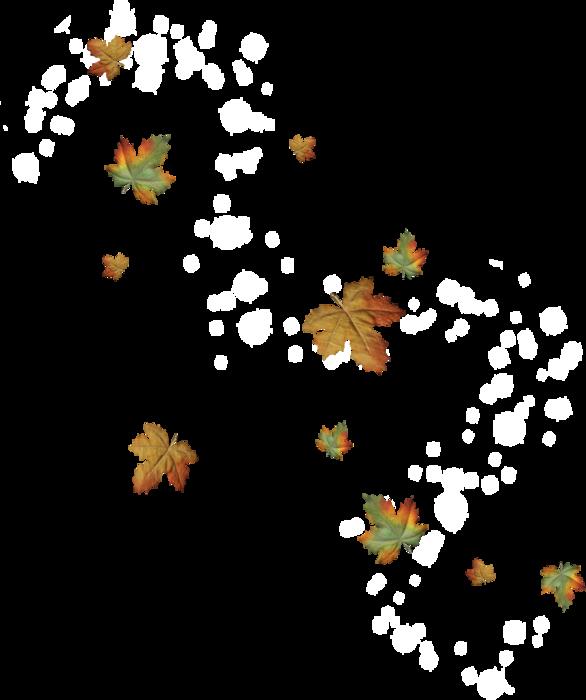 116824915 Enchanted Autumn El78 Png 586 700 Fall Leaves Png Leaf Wallpaper Maple Leaf Tattoo