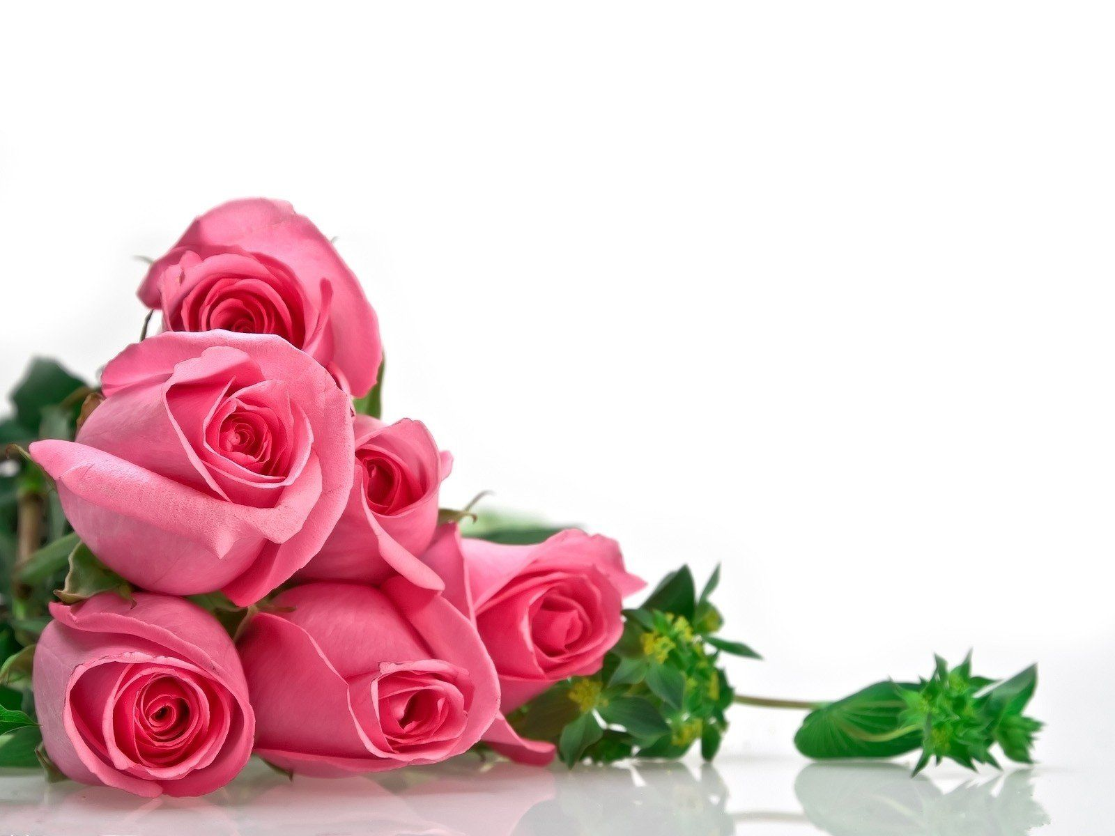 Download Hd Wallpapers Of 292297 Flowers Roses Free Download High Quality And Widescreen Resolutions In 2020 Rose Flower Wallpaper Pink Rose Bouquet Flower Wallpaper