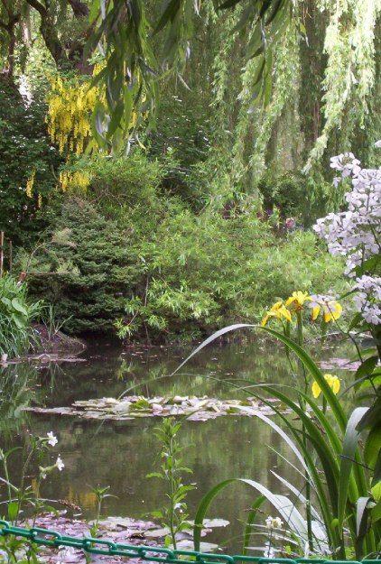 Water lilies - Claude Monet's Water Garden - Giverny