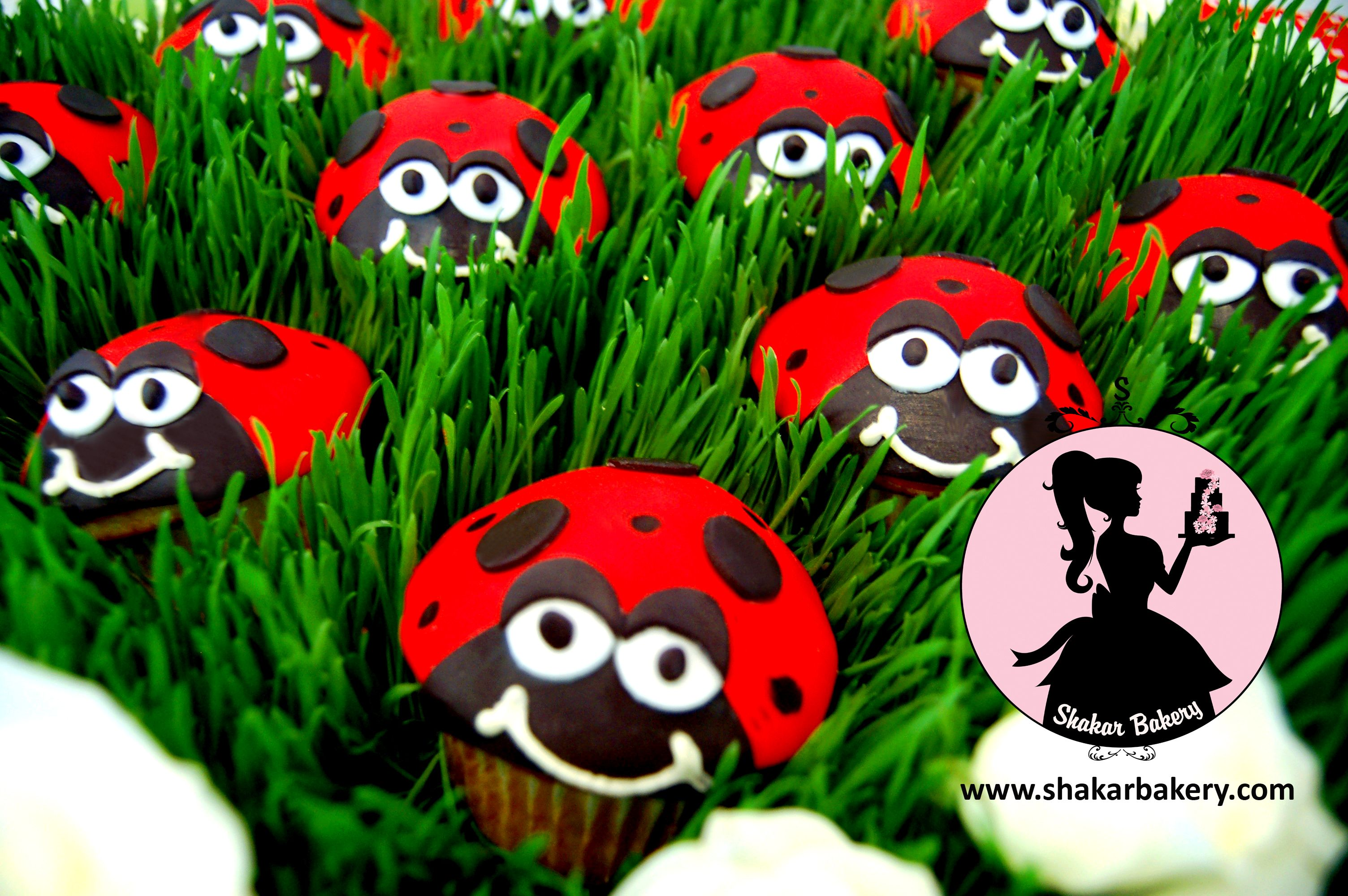 Look at this picture and tell me it didn't make you smile!! Ladybug fondant cupcakes sitting in wheat grass. This simple design touch really animated these cupcakes! These were part of the ladybug dessert table