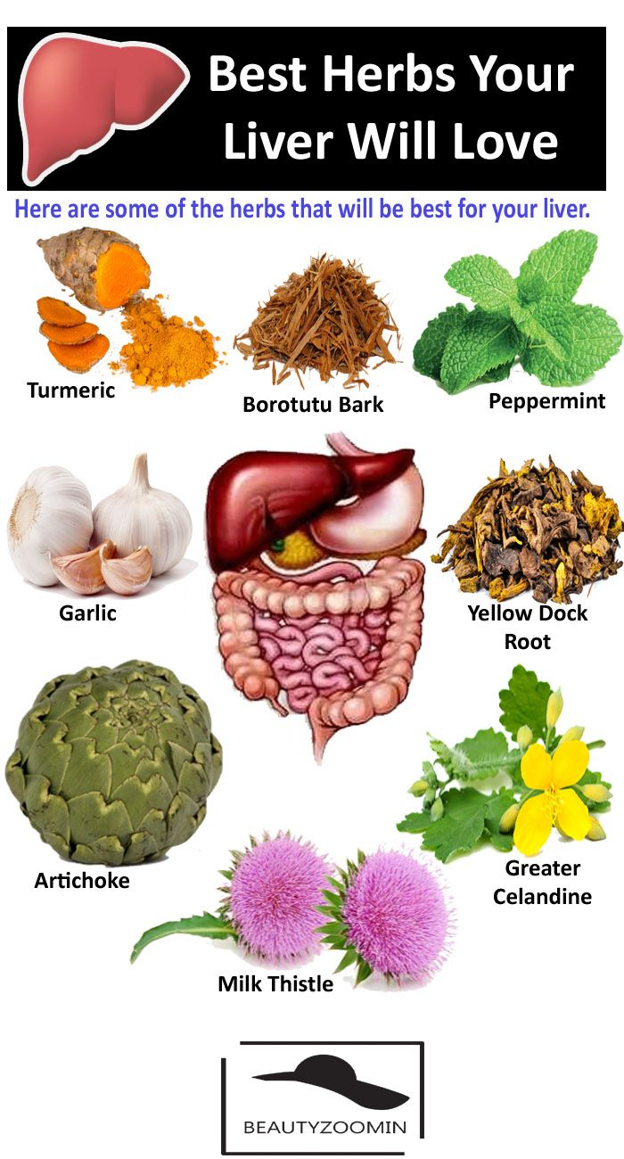 Best Herbs Your Liver Will Always Love. Full List of Plants