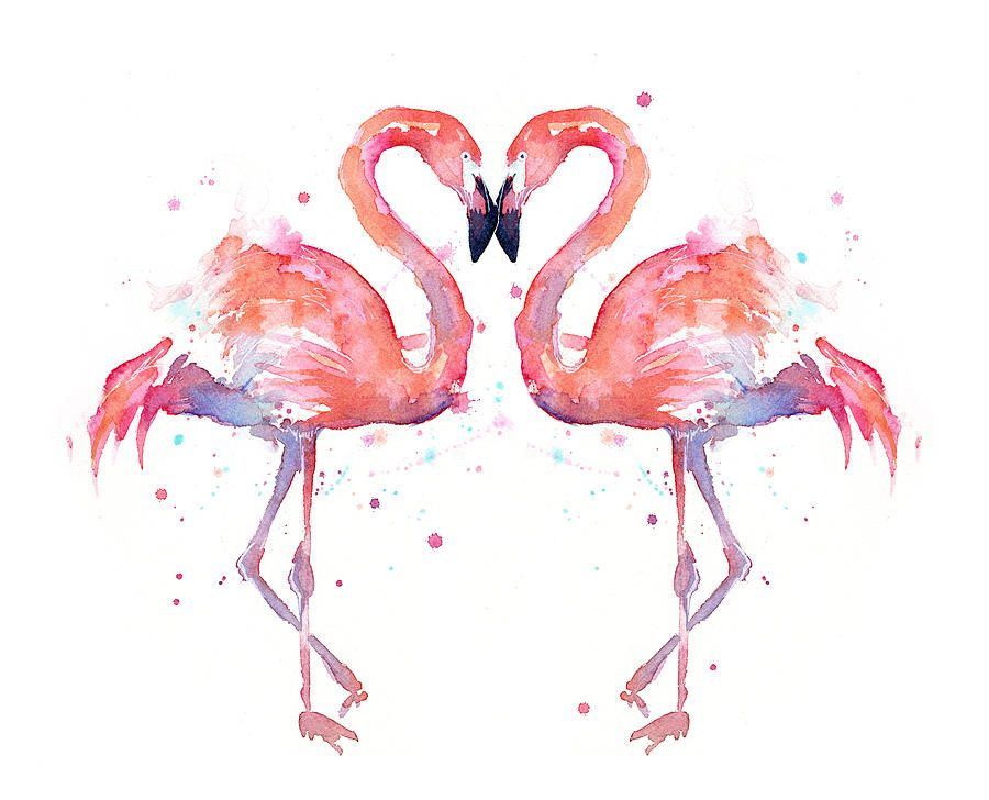 Flamingo Png Acuarela Buscar Con Google ERT Pinterest