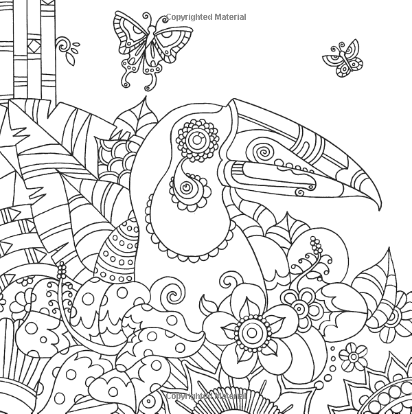 Toucan Bird Tropical Wildlife Coloring Pages Colouring Adult Detailed Advanced Printable Kleuren Voor Volwassenen Coloriage Pour