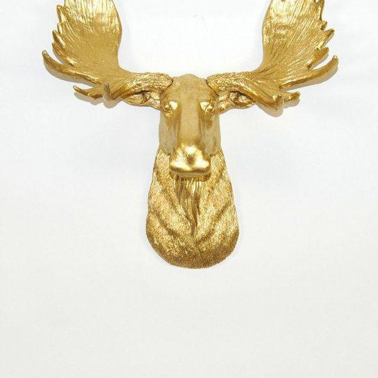 The MINI Elcide | Mini Gold Moose Head | Antlers and the like ...