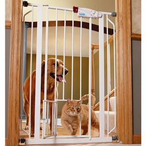 Extra Tall Walk Through Metal Gate W Small Pet Door