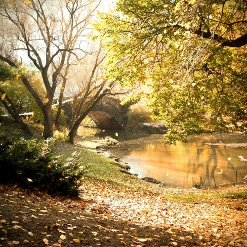 A walk in Central Park, NY by http://tripelonia.com/destination/a-walk-in-central-park-ny/173