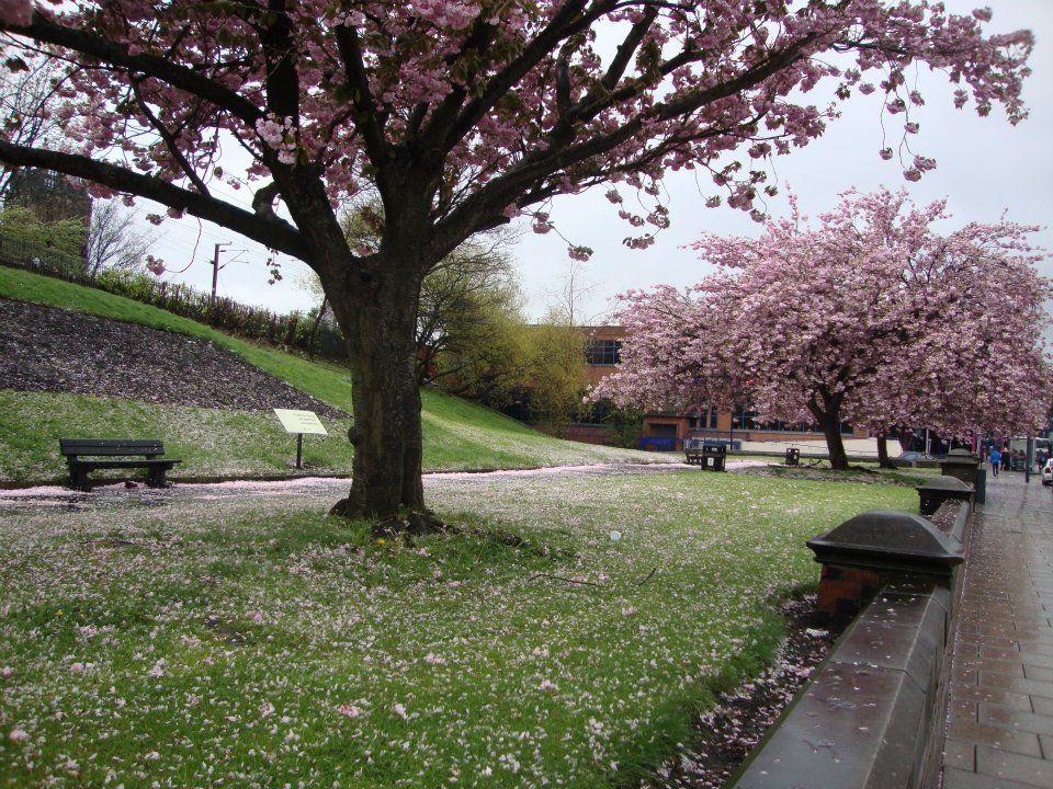 Englannin kevät