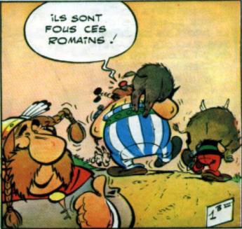 asterix ils sont fous ces romains ds