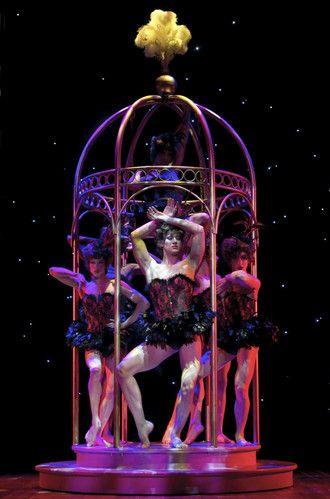 38 La Cage Aux Folles Ideas Harvey Fierstein Cage Musical Theatre Broadway