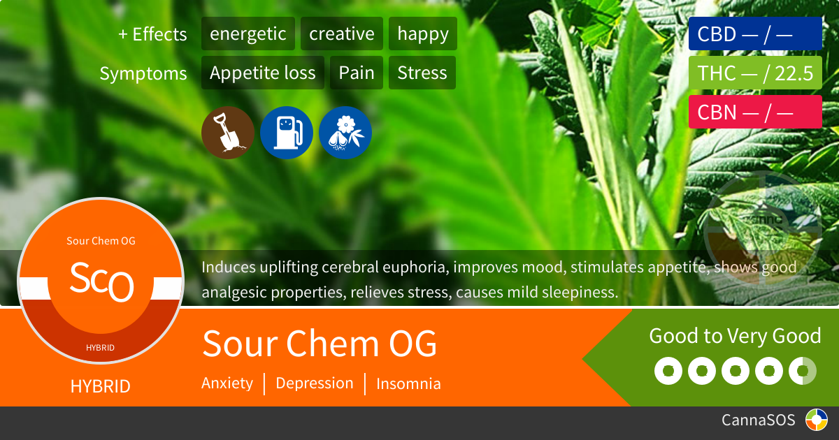 Sour Chem Og Infographics Pinterest Cannabis Weed And