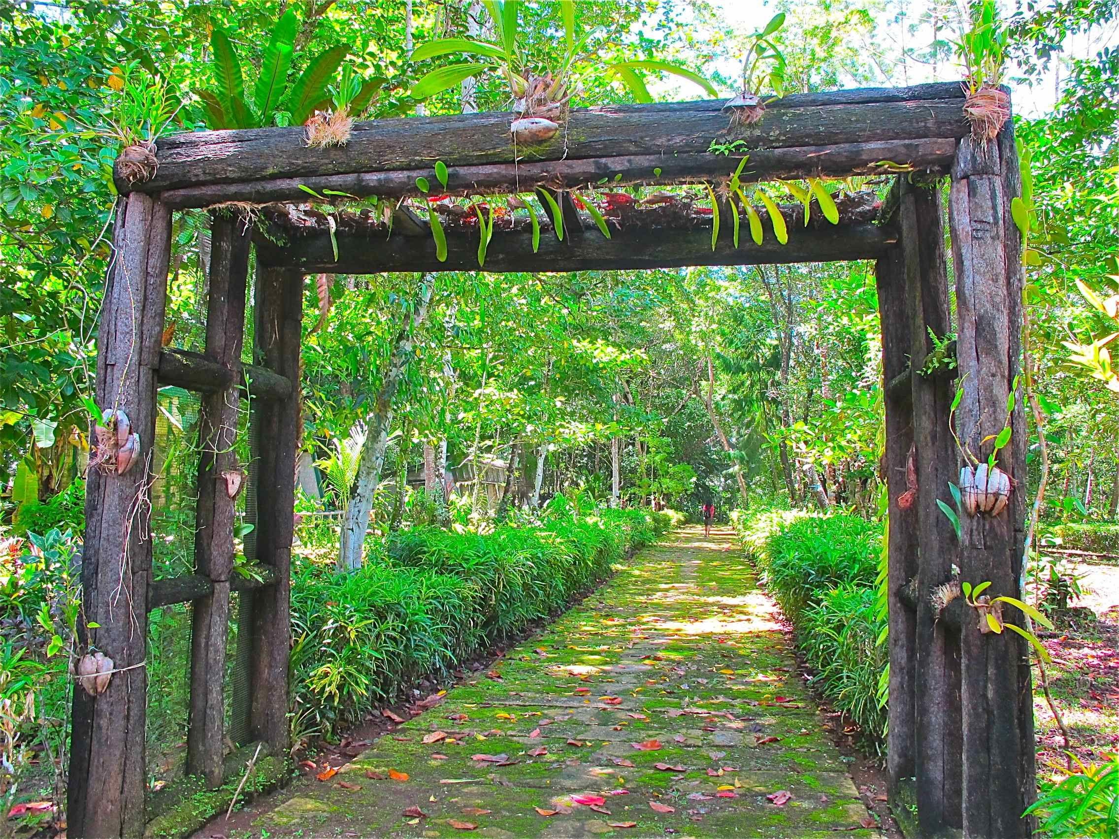 Taman Bunga biak papua indonesia Garden arch, Outdoor