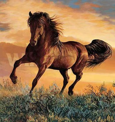 Mustang horse painting - photo#32