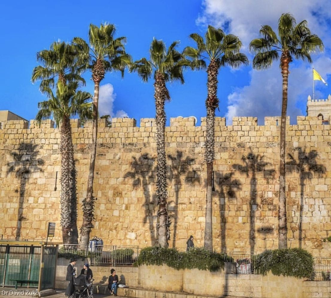 Httpwww Overlordsofchaos Comhtmlorigin Of The Word Jew Html: Pin By Teresita Calero On TRAVEL / HOLY LAND In 2019