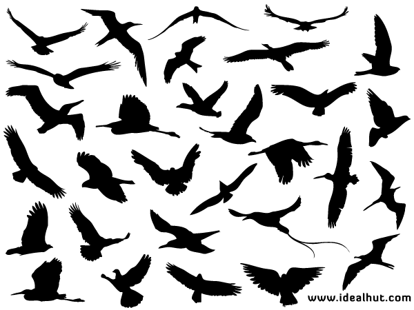 Free Flying Bird Silhouettes Vector | Free Vectors | Pinterest ...