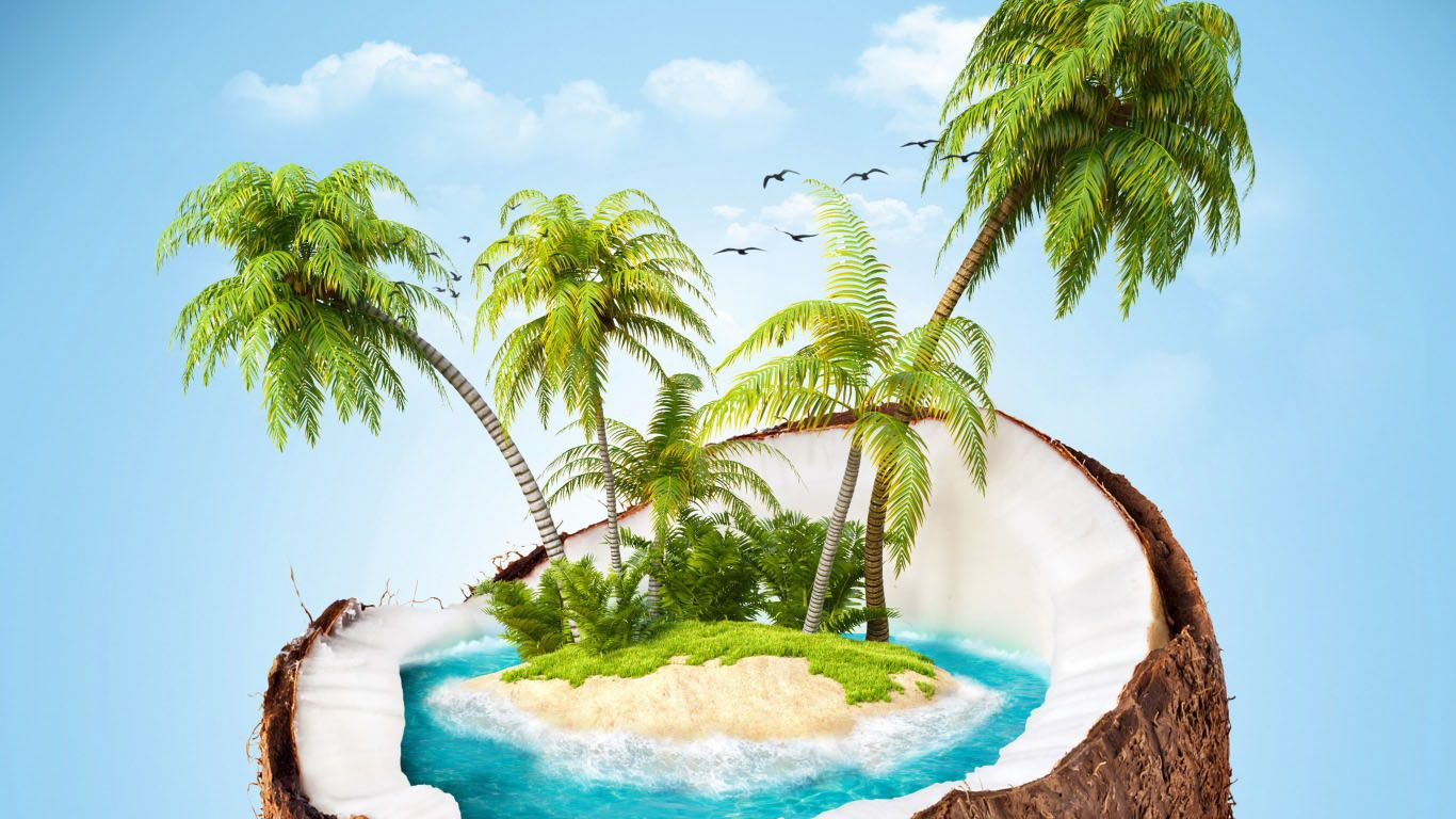 Beautiful Coconut Tree Download Free Desktop Backgrounds