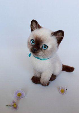 «Бася - котик, котенок, кошка, валяная игрушка, валяние из шерсти, котенок из шерсти» — картка користувача sagdy00 у Яндекс.Колекціях